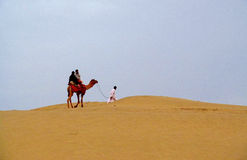 Camel with a man walking on the sand in the desert Stock Photos