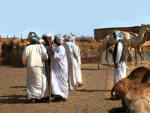 Camel market Stock Photo