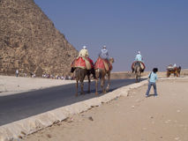 Camel men. Egyptian camel men in Giza complex of pyramids Stock Images