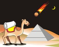 Camel and meteorite Stock Photography