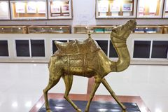 Camel museum in National Research Centre on Camel, Bikaner. Which depicts the research and developmental aspects of camels royalty free stock photography