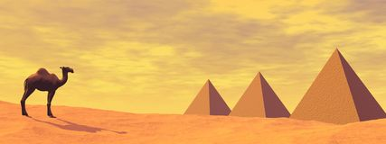 Camel and mysterious pyramids - 3D render Stock Photography
