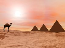 Camel and mysterious pyramids - 3D render Stock Image