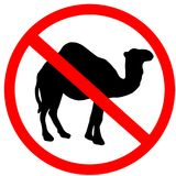 Camel not allowed prohibition red circle warning road sign, isolated on white background. Camel not allowed prohibition red circle warning road sign, isolated Stock Photography