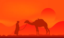 Camel over sunset. Silhouette of a camel over sunset in desert Stock Photo