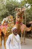 Camel owner with camels. Bikaner, India, 14th January 2017 -  A camel owner with a camel at the Bikaner Camel Mela in Rajastan, India Royalty Free Stock Photography