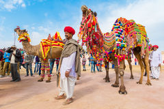 Camel owner with his camel. Bikaner, India, 14th January 2017 - A Rajasthani man with his decorated camel at the Bikaner Camel Mela in Rajastan, India royalty free stock images