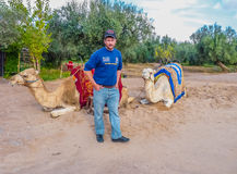 Camel owner offers rides on a camel taxi Royalty Free Stock Photos