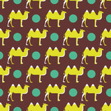 Camel pattern Royalty Free Stock Images