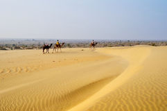 Camel with people on Sand Dunes Stock Photography