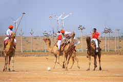 Camel polo match during Desert Festival, Jaisalmer, India Stock Photography