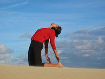Camel pose Stock Images