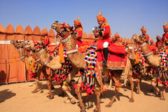Camel procession at Desert Festival, Jaisalmer, India Stock Photos