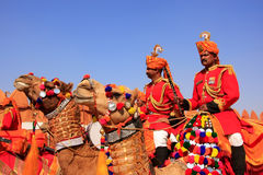Camel procession at Desert Festival, Jaisalmer, India Stock Photo