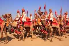 Camel procession at Desert Festival, Jaisalmer, India Royalty Free Stock Photo