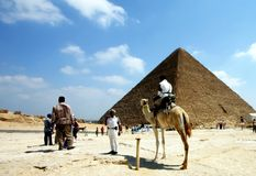 Camel and pyramid. Egypt:keops pyramid and camel royalty free stock photography
