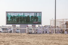 Camel race in Doha, Qatar Stock Images