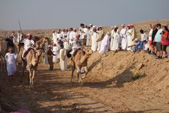 Camel Race Stock Images