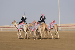 Camel race. In sunny desert Royalty Free Stock Photos