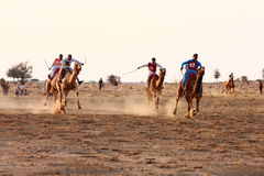 Camel racing Jaisalmer, India. Royalty Free Stock Photography