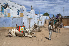 A camel relaxes in the Nubian village of Garb-Sohel in Egypt. Stock Images