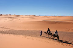 Camel ride. Tourists on a camel ride in the Merzouga desert (Morocco Royalty Free Stock Image