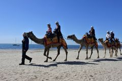 Camel ride on the beach of Geelong Victoria Australia. Camel ride on Geelong beach, a popular tourist seaside resort near Melbourne Victoria, Australia stock photos