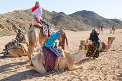 Camel ride on the desert in Egypt Stock Photo