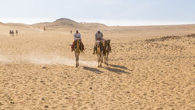 Camel ride in the desert Stock Photo