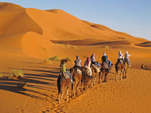 Camel ride Stock Photos