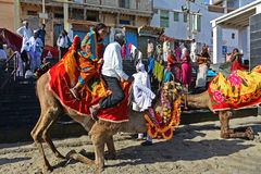 Camel Ride. Pilgrimages are enjoying the tour at the sacred  Gomti river bed during low tide.At the rear of Dwarkadish temple in Gujarat , flows the sacred Gomti Royalty Free Stock Images