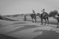 Camel ride in Rajasthan, India. Camel ride in the Thar Desert in Rajasthan India at 20 kilometers from pakistan. Such amazing to ride across the dune under a hot stock photo