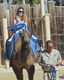 A Camel Ride at The Reid Park Zoo. Tucson, Arizona - February 17: The Reid Park Zoo on February 17, 2015, in Tucson, Arizona. A mother and daughter take a camel royalty free stock images