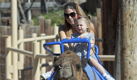 A Camel Ride at The Reid Park Zoo. Tucson, Arizona - February 17: The Reid Park Zoo on February 17, 2015, in Tucson, Arizona. A mother and daughter take a camel stock image