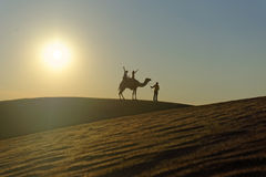 Camel ride Stock Image