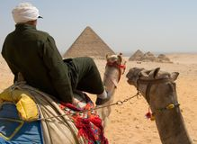 Camel rider. Egyptian man riding camel in Giza, pyramids on background Royalty Free Stock Images