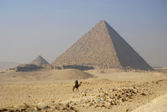 Camel rider. GIZA, EGYPT - NOV 15: Camel rider in front the Giza pyramid on November 15, 2009, in Giza, Egypt. The world's oldest tourist attraction, the Stock Photography