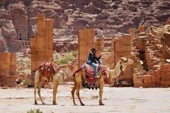 Camel rider Stock Image