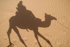Camel rider shadow Stock Photo