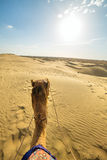 Camel rider view in Thar desert, Rajasthan Royalty Free Stock Photography
