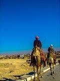 Camel Riders in Cario, Egypt Stock Photo