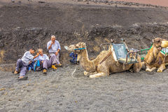 Camel riders wait for tourists Royalty Free Stock Image