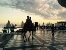 Camel riding Royalty Free Stock Photo
