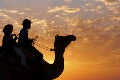 Desert camel riding Royalty Free Stock Images
