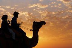 Desert camel riding royalty free stock images