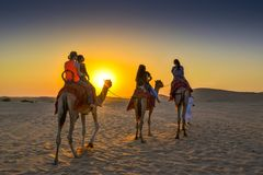 Camel riding Stock Images
