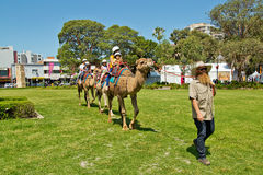 Camel riding at multicultural festival in Sydney Royalty Free Stock Photo