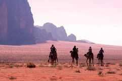 Camel riding in Wadi Rum Jordan Stock Photos