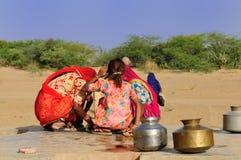 Camel Safari Stock Images
