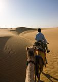 Camel safari. First person view of a camel riding experience - Thar desert, Rajasthan, India stock photography